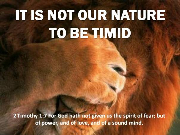 IT IS NOT OUR NATURE TO BE TIMID